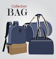 Bag c05 2 01 vector
