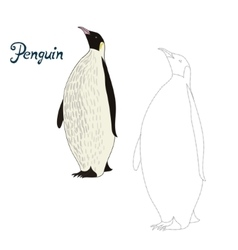 Educational game connect dots to draw penguin bird vector