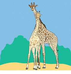 Funny couple in love giraffes vector