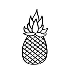 pineapple fresh fruit drawing icon vector image