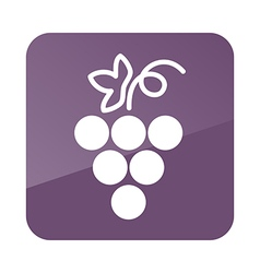 Grapes outline icon Fruit vector image