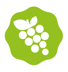 Sticker delicious grape fruits icon vector