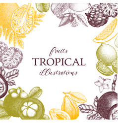 Tropical fruits design vector