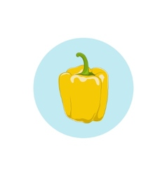 Icon yellow bell peppersweet pepper or capsicum vector