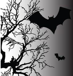 bat silhouette vector image vector image