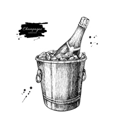 Champagne bottle in ice bucket Hand drawn vector image vector image