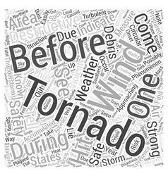 Tips for tornado emergency preparation word cloud vector