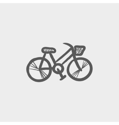 Bicycle sketch icon vector image