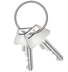Keys isolated on white vector image