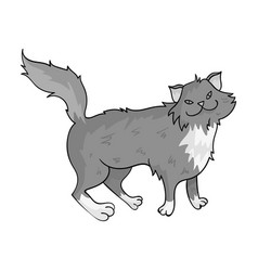 Norwegian forest cat icon in monochrome style vector