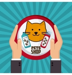 Pet shop with cat design vector image