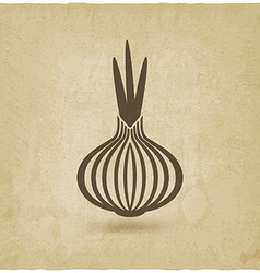 Onion old background vector
