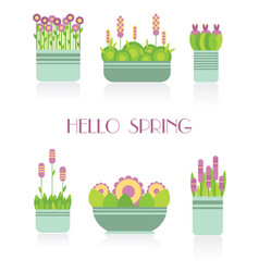 Collection of indoor plants in striped pots vector