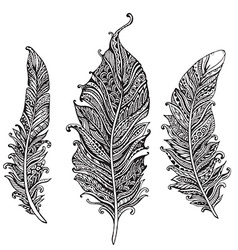 Hand drawn stylized feathers black and white vector image