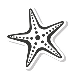 Starfish sea isolated icon vector