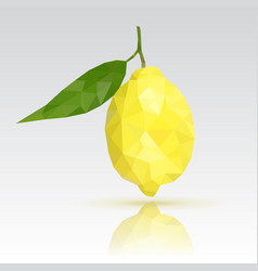 Lemon with leaf polygonal vector