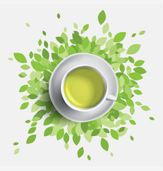 Green tea cup green leaves vector
