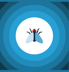 Isolated tiny flat icon housefly element vector