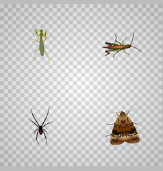 Realistic grasshopper butterfly locust and other vector