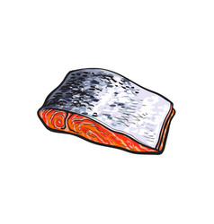 Sea red salmon fish meat fillet isolated vector