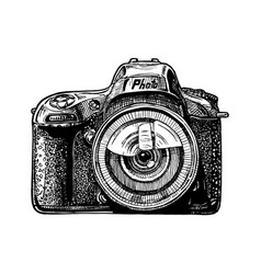 single-lens reflex camera vector image vector image