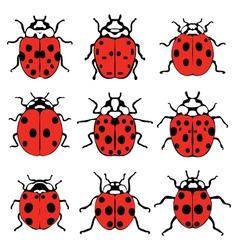 cheerful ladybugs vector image vector image