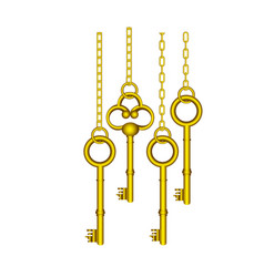 gold old keys hanging icon vector image