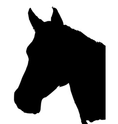 silhouette of horse vector image