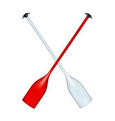 two crossed paddles vector image