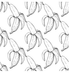 banana seamless pattern isolated hand vector image vector image
