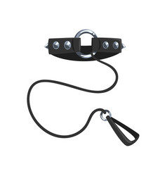 leather fetish collar with steel spikes and leash vector image