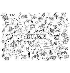set of different hand drawn autumn design vector image