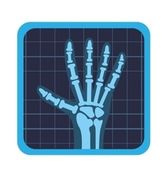 X rays test icon vector