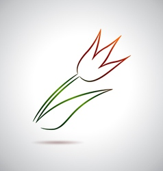 Tulip drawing vector