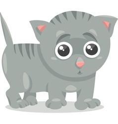 kitten character cartoon vector image