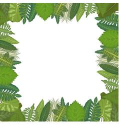 White background with circular border decorative vector