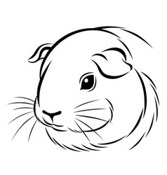Stylized guinea pig head vector