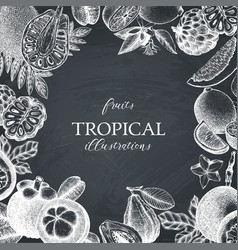 Tropical fruits design on chalkboard vector