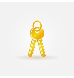 Keys gold icon vector image