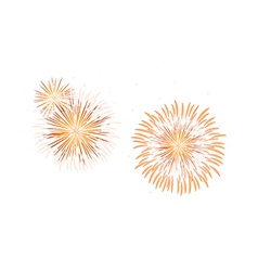 Icon fireworks vector