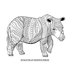 Sumatran rhinoceros rare animal conservation vector