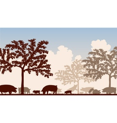 Orchard pigs vector