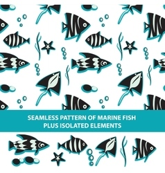 Seamless pattern of marine fish plus isolated vector