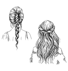 Braids vector image