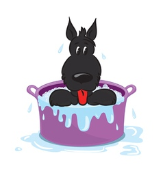 Funny puppy in the bath vector image vector image