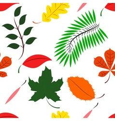 Seamless of colored different leaves vector