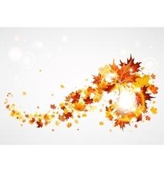 Beautiful swirl of maple leave vector