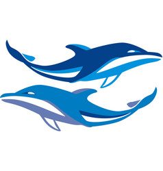 dolphin swims vector image