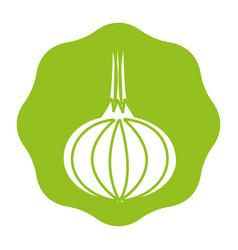 Sticker fresh onion vegetable icon vector