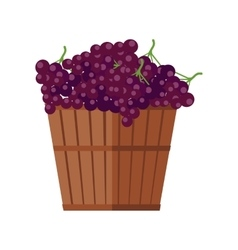 Wooden basket with grapes red wine vector